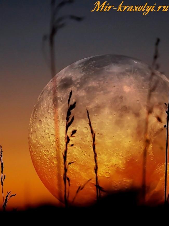 Лунный календарь маникюра на ноябрь 2018 года