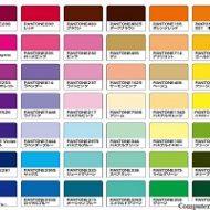12 модных цветов по версии PANTON осень-зима 2019 -2020